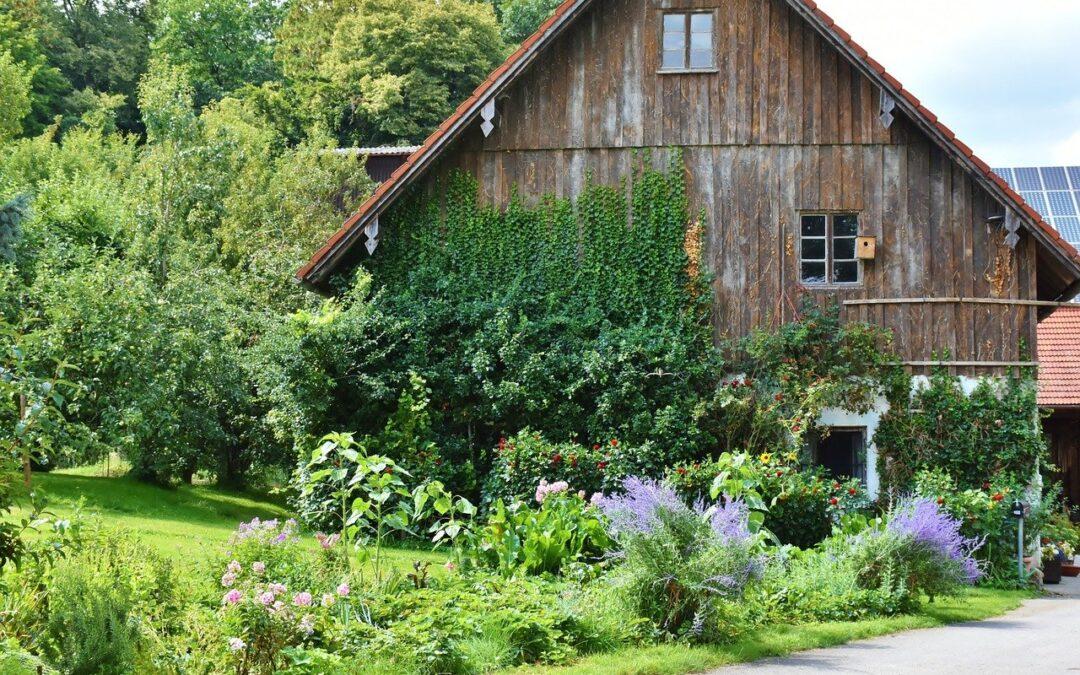 9 Maisons qui montrent pourquoi le bois est le matériau du futur