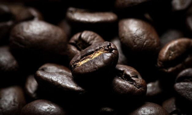 5 bonnes raisons de consommer du café